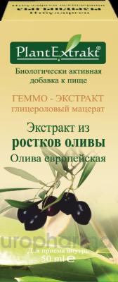 ГЕММО - экстракт из ростков оливы 50 мл, фл., Олива европейская