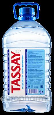 Tassay вода негазированная пэт 5л